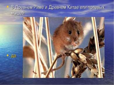 В Древнем Риме и Древнем Китае ели полевых мышей да