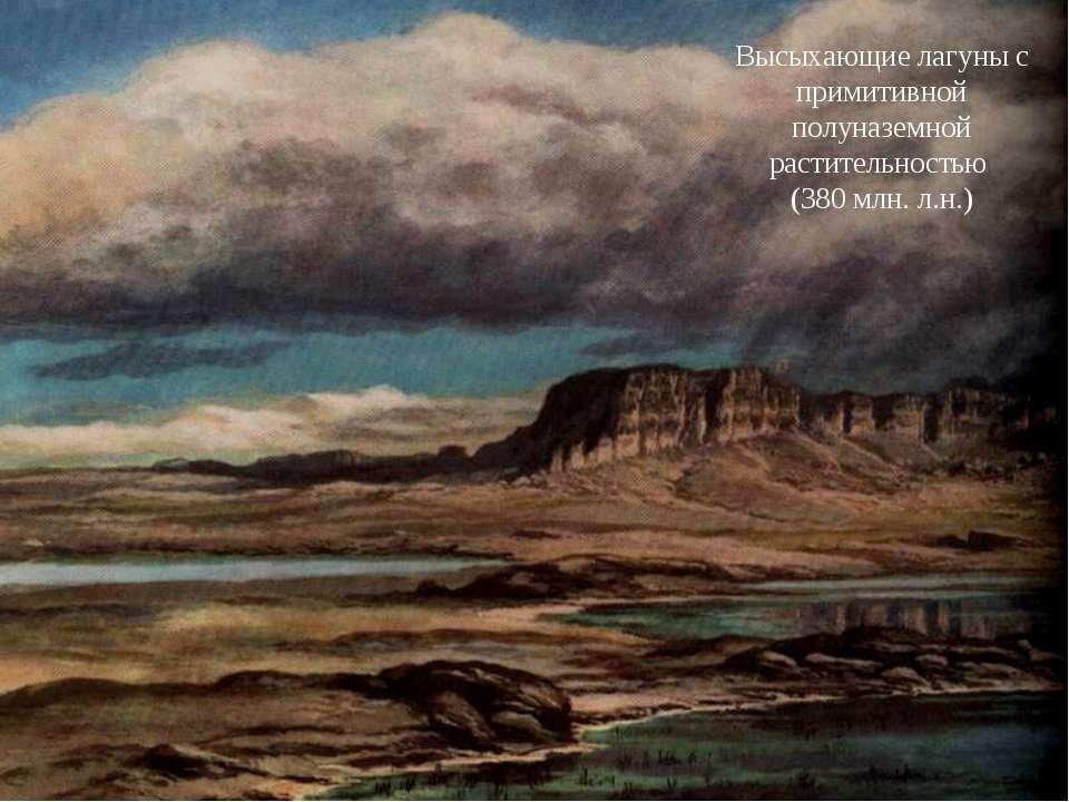 Высыхающие лагуны с примитивной полуназемной растительностью (380 млн. л.н.)