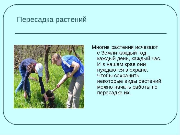 Пересадка растений Многие растения исчезают с Земли каждый год, каждый день, ...
