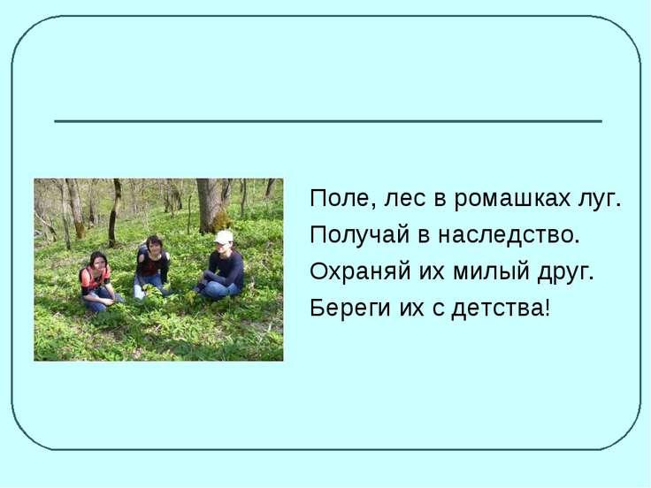Поле, лес в ромашках луг. Получай в наследство. Охраняй их милый друг. Береги...