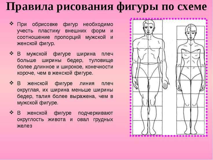 Правила рисования фигуры по схеме При обрисовке фигур необходимо учесть пласт...