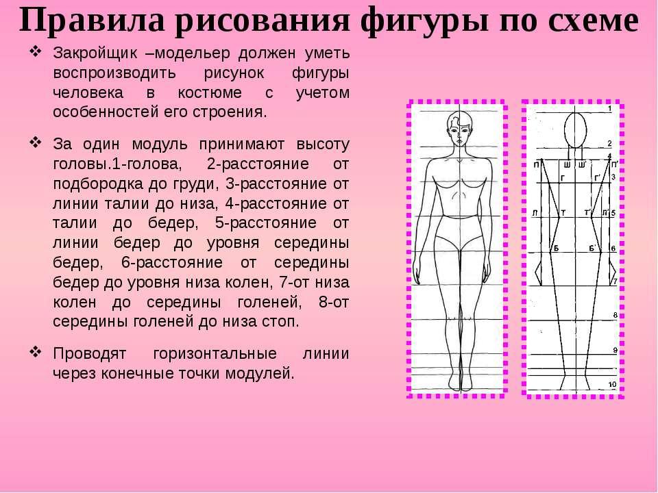 Правила рисования фигуры по схеме Закройщик –модельер должен уметь воспроизво...