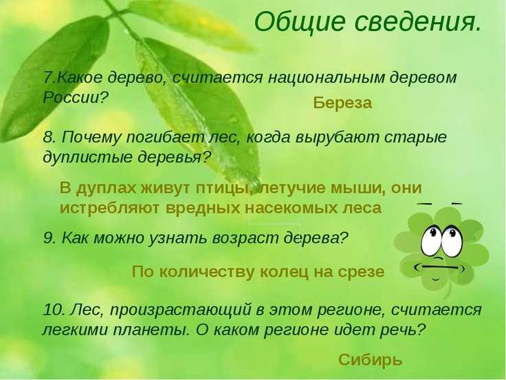 Общие сведения. 9. Как можно узнать возраст дерева? 7.Какое дерево, считается...