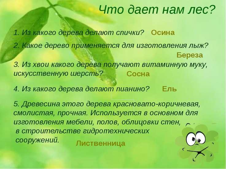 Что дает нам лес? 1. Из какого дерева делают спички? 2. Какое дерево применяе...