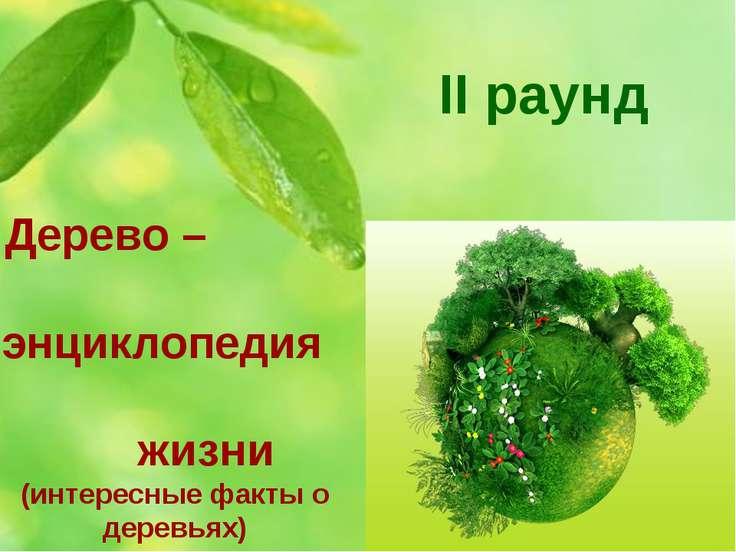 II раунд Дерево – энциклопедия жизни (интересные факты о деревьях)