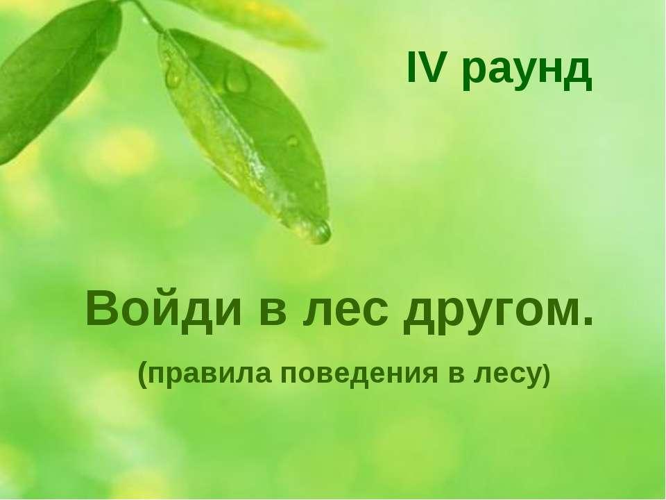 Войди в лес другом. (правила поведения в лесу) IV раунд