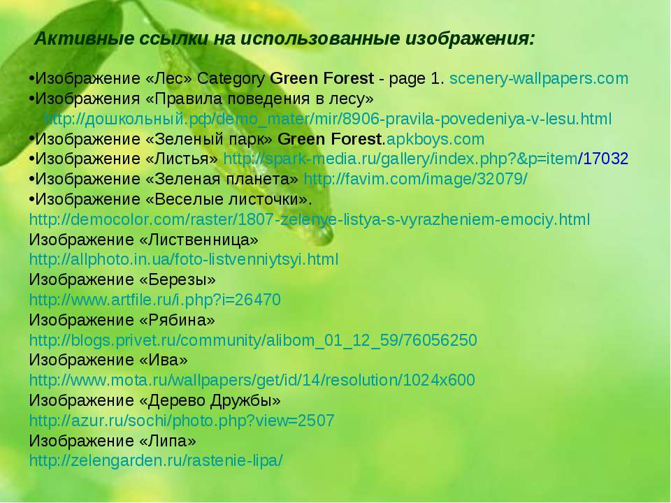 Изображение «Лес» Category Green Forest - page 1. scenery-wallpapers.com Изоб...