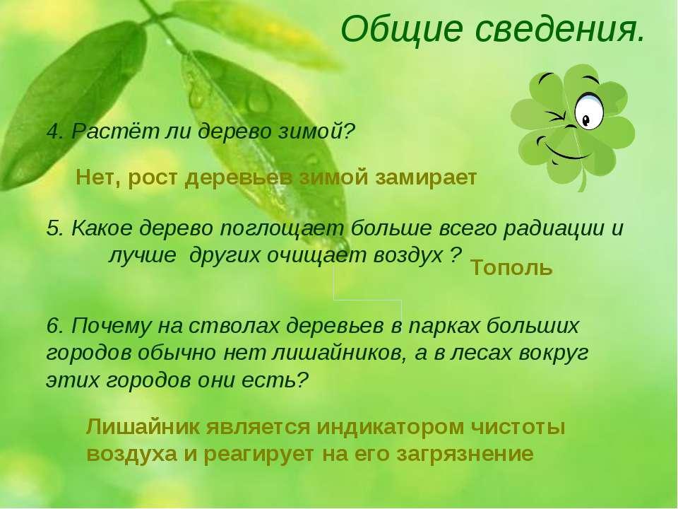 Общие сведения. 4. Растёт ли дерево зимой? 5. Какое дерево поглощает больше в...