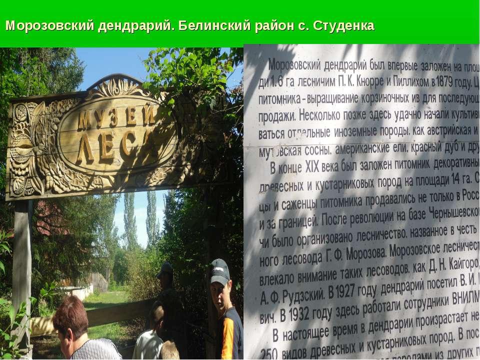Морозовский дендрарий. Белинский район с. Студенка