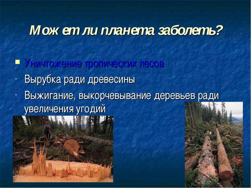 Может ли планета заболеть? Уничтожение тропических лесов Вырубка ради древеси...