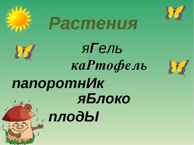 яГель каРтофель папоротнИк яБлоко плодЫ Растения