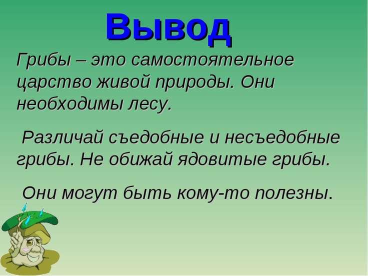 Вывод Грибы – это самостоятельное царство живой природы. Они необходимы лесу....