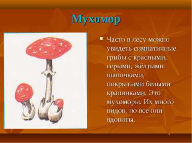 Мухомор Часто в лесу можно увидеть симпатичные грибы с красными, серыми, жёлт...
