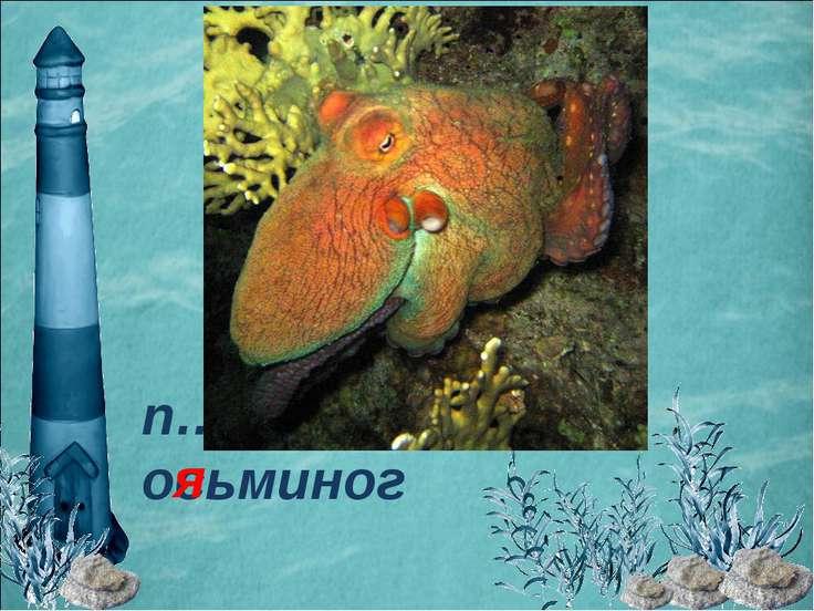 п…тнистый осьминог я