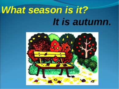 What season is it? It is autumn.