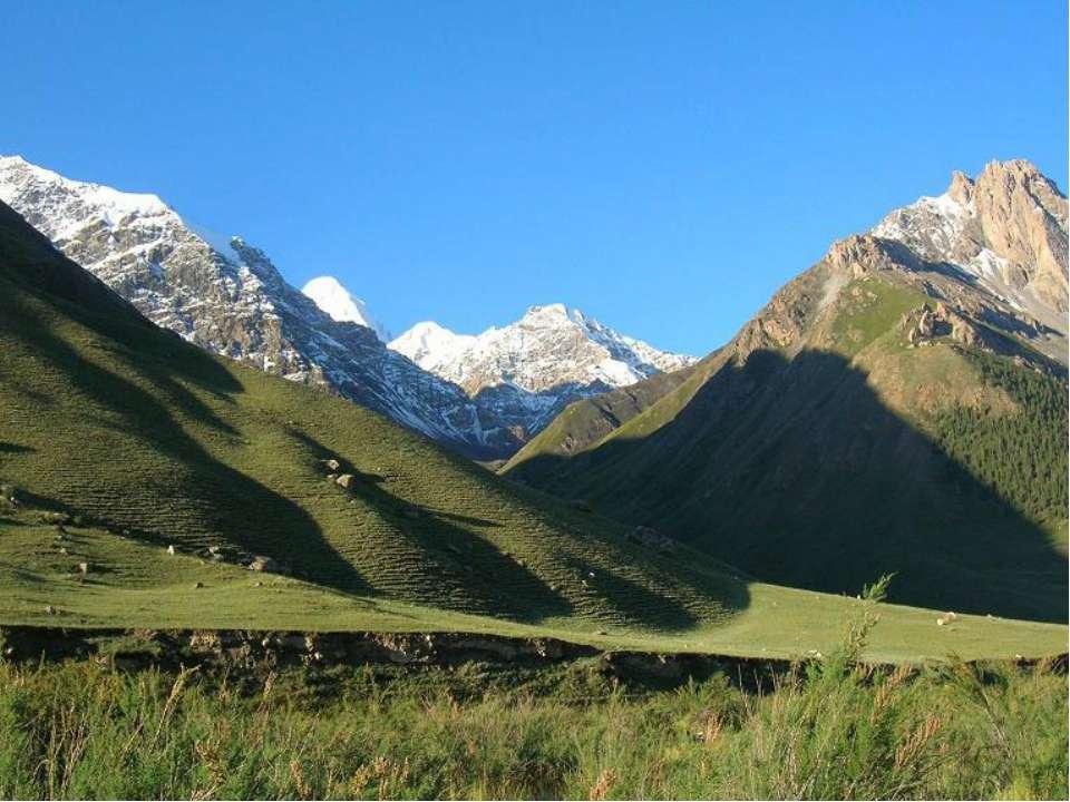 На солнечных южных склонах гор растут только травы