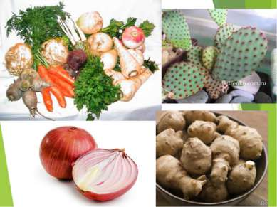 В какой части растений могут запасаться питательные вещества?
