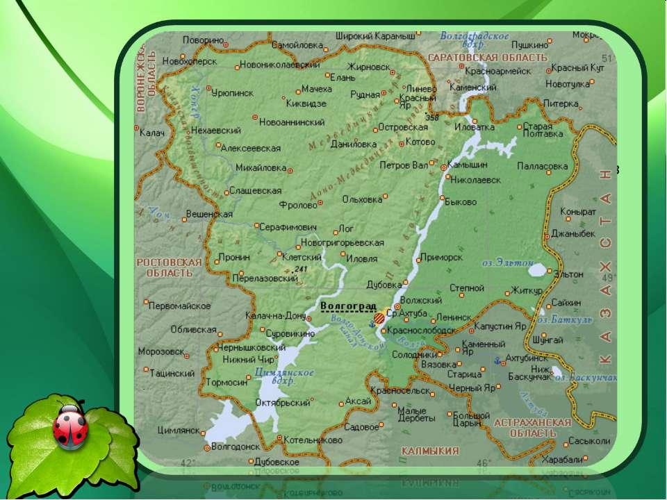Природа нашего края удивительна и разнообразна. Глядя на карту Волгоградской ...