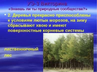 УЭ-3 Викторина «Знаешь ли ты природные сообщества?» 2. Деревья прекрасно прис...