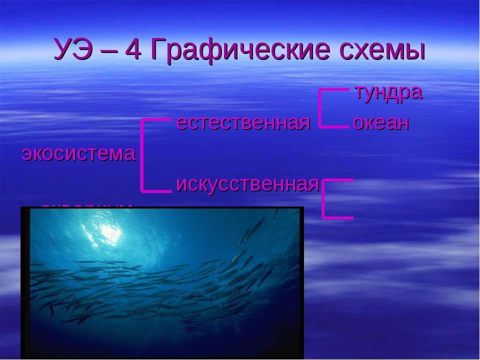 УЭ – 4 Графические схемы тундра естественная океан экосистема искусственная а...