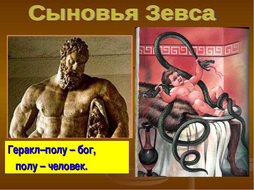 Геракл–полу – бог, полу – человек.