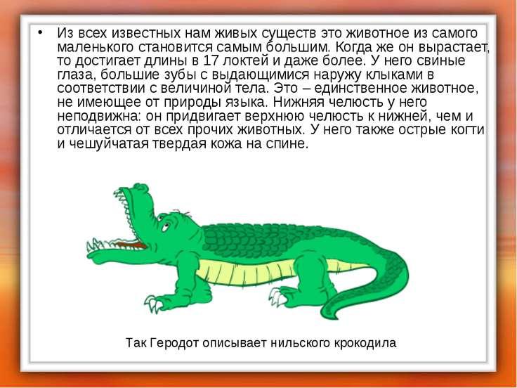 Из всех известных нам живых существ это животное из самого маленького станови...