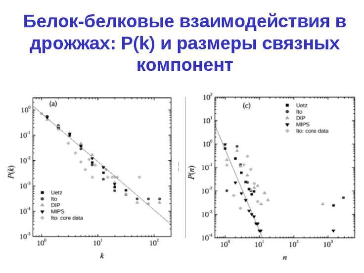 Белок-белковые взаимодействия в дрожжах: P(k) и размеры связных компонент