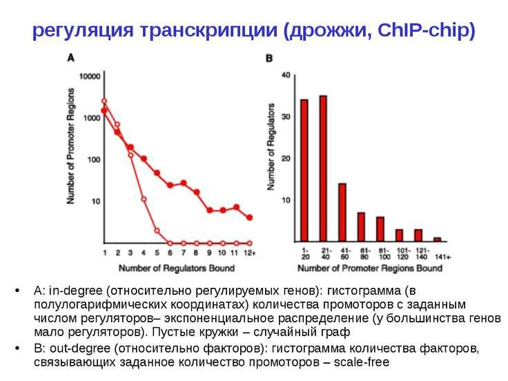 регуляция транскрипции (дрожжи, ChIP-chip) A: in-degree (относительно регулир...