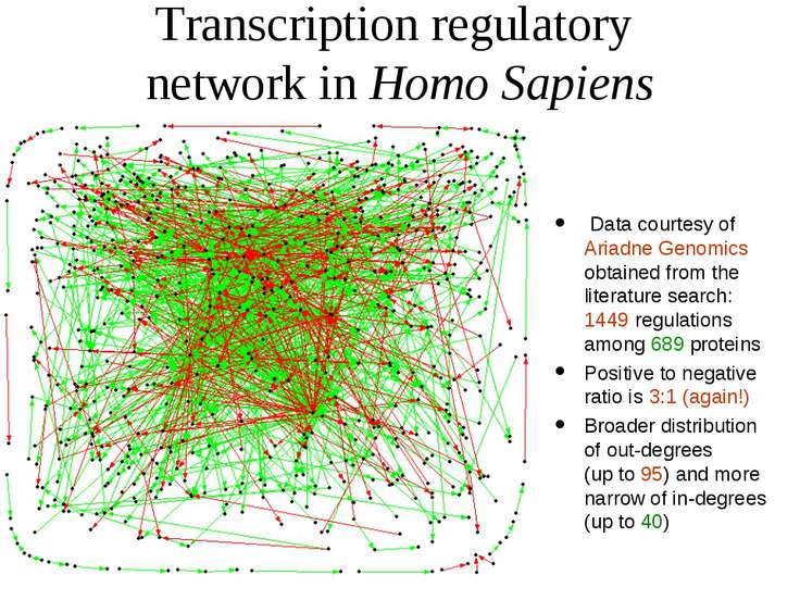 Transcription regulatory network in Homo Sapiens Data courtesy of Ariadne Gen...