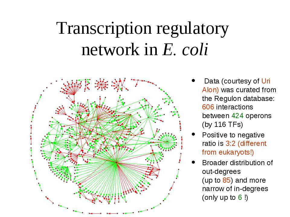 Transcription regulatory network in E. coli Data (courtesy of Uri Alon) was c...