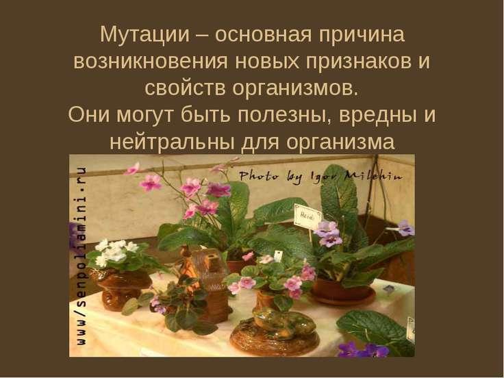 Мутации – основная причина возникновения новых признаков и свойств организмов...