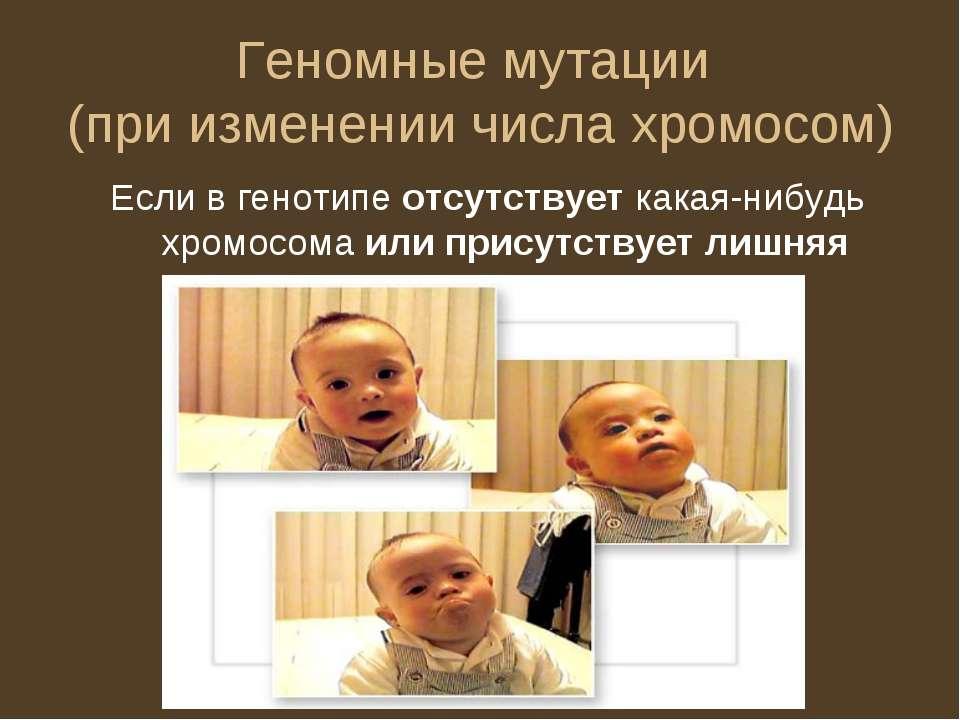 Геномные мутации (при изменении числа хромосом) Если в генотипе отсутствует к...