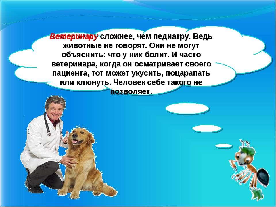 Ветеринару сложнее, чем педиатру. Ведь животные не говорят. Они не могут объя...