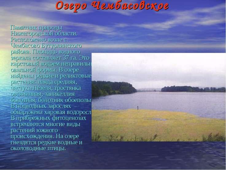 Озеро Чембасовское Памятник природы Нижегородской области. Расположено возле ...