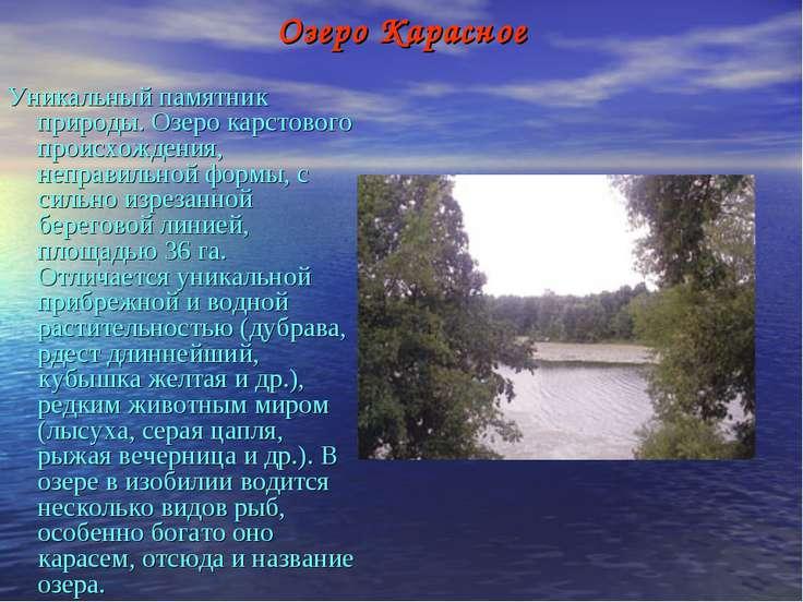 Озеро Карасное Уникальный памятник природы. Озеро карстового происхождения, н...
