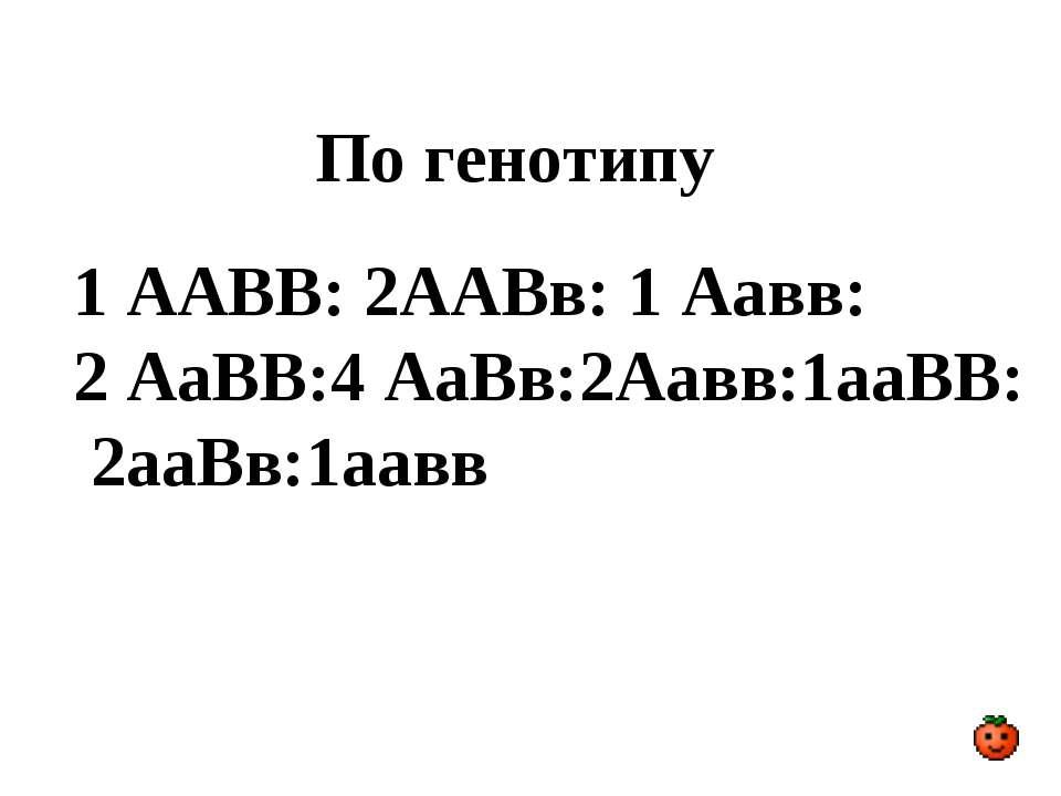 По генотипу 1 ААВВ: 2ААВв: 1 Аавв: 2 АаВВ:4 АаВв:2Аавв:1ааВВ: 2ааВв:1аавв