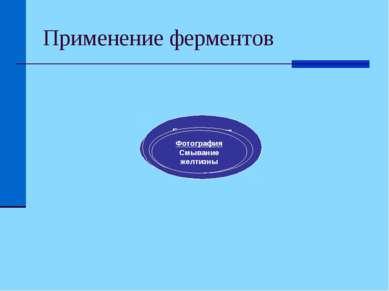 Применение ферментов Ферменты Пищевая Производство «готовых» каш Фармацевтиче...