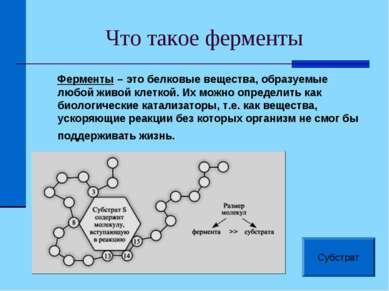 Что такое ферменты Ферменты – это белковые вещества, образуемые любой живой к...