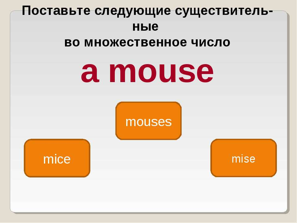 mice mouses mise Поставьте следующие существитель ные во множественное число ...