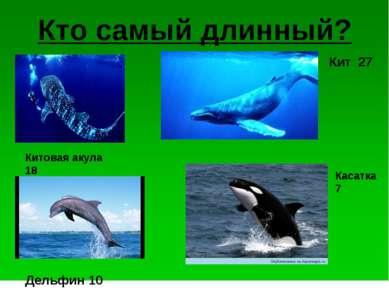 Кто самый длинный? Китовая акула 18 Кит 27 Касатка 7 Дельфин 10