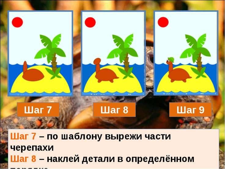 Шаг 7 Шаг 8 Шаг 9 Шаг 7 – по шаблону вырежи части черепахи Шаг 8 – наклей дет...