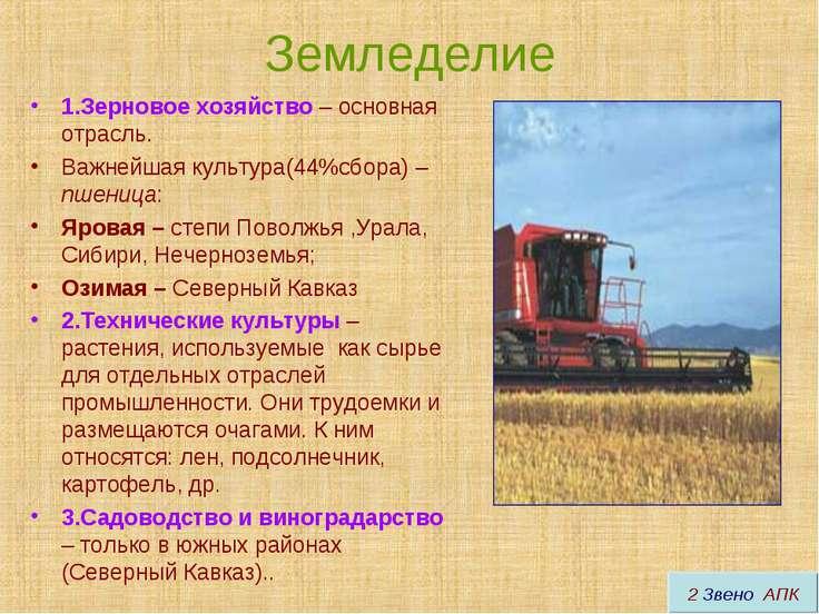 Земледелие 1.Зерновое хозяйство – основная отрасль. Важнейшая культура(44%сбо...