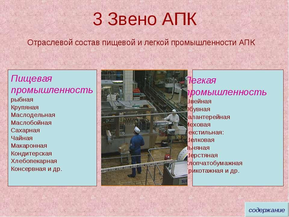 3 Звено АПК Отраслевой состав пищевой и легкой промышленности АПК Пищевая про...