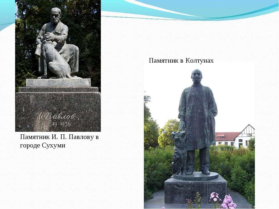 Памятник И.П.Павлову в городе Сухуми Памятник в Колтунах
