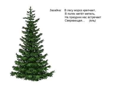 Загадка: В лесу мороз крепчает, В полях метёт метель, На праздник нас встреча...