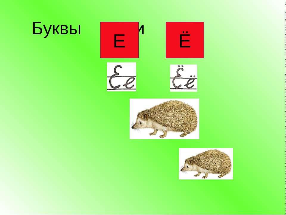 Буквы и Е Ё