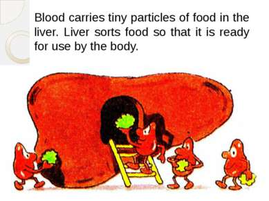 Blood carries tiny particles of food in the liver. Liver sorts food so that i...