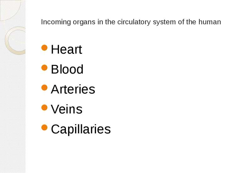 Incoming organs in the circulatory system of the human Heart Blood Arteries V...