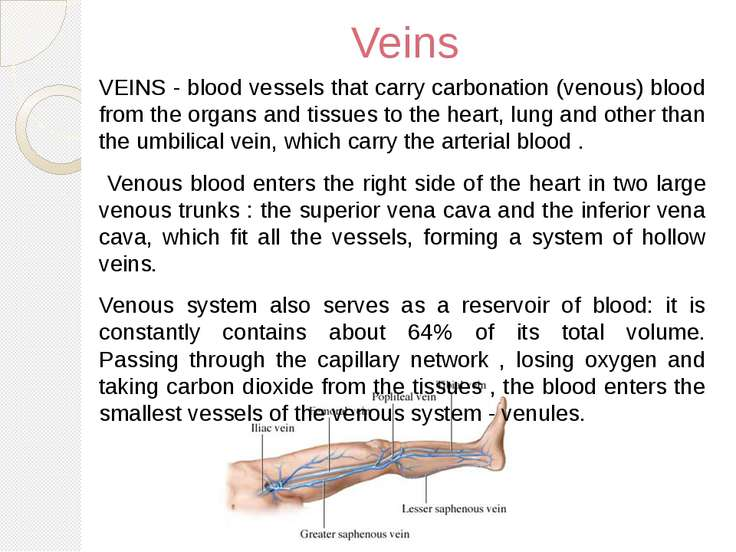 Veins VEINS - blood vessels that carry carbonation (venous) blood from the or...