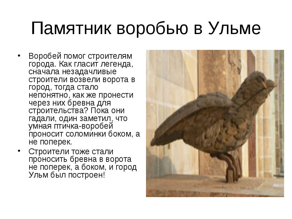 Памятник воробью в Ульме Воробей помог строителям города. Как гласит легенда,...